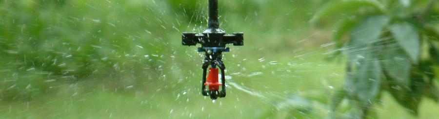 smart-sprinkler-900px